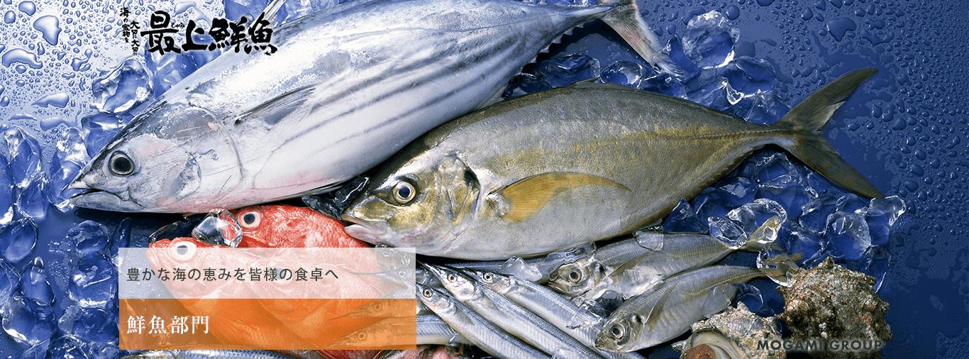鮮魚部門-豊かな海の恵みを皆様の食卓へ