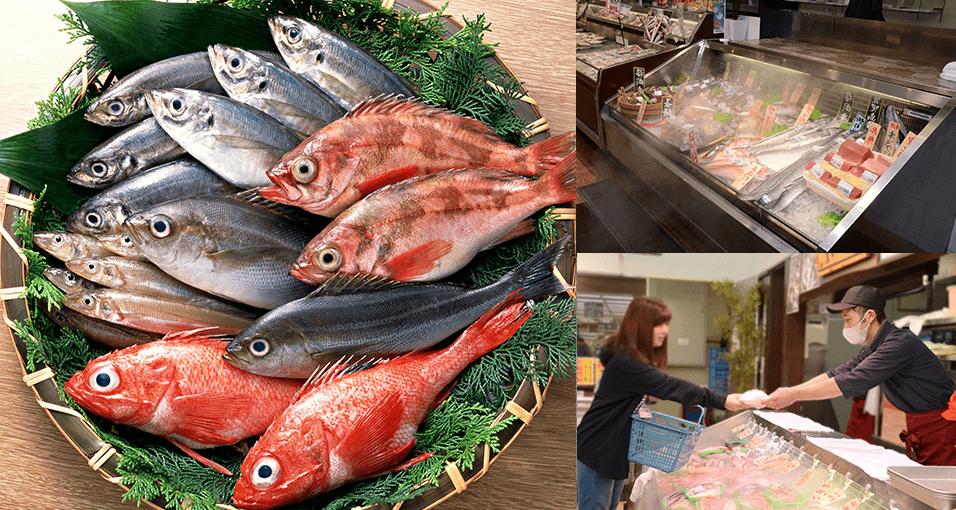 鮮魚写真と鮮魚店の様子